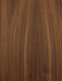 Slab Plywood Cabinet Doors | Plywood cabinets, Cabinet ...