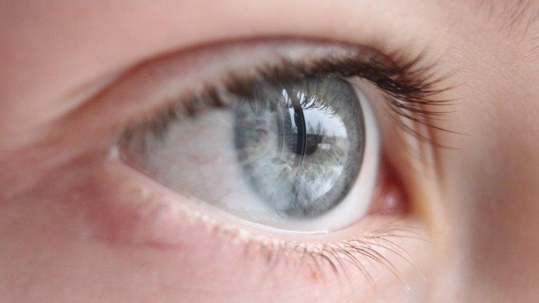 The Truth About Gray Eyes In 2021 Gray Eyes Dark Grey Eyes Aesthetic Eyes