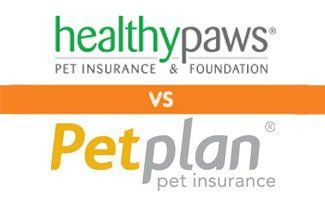 Healthy Paws Vs Petplan Who Comes Out On Top Pet Insurance