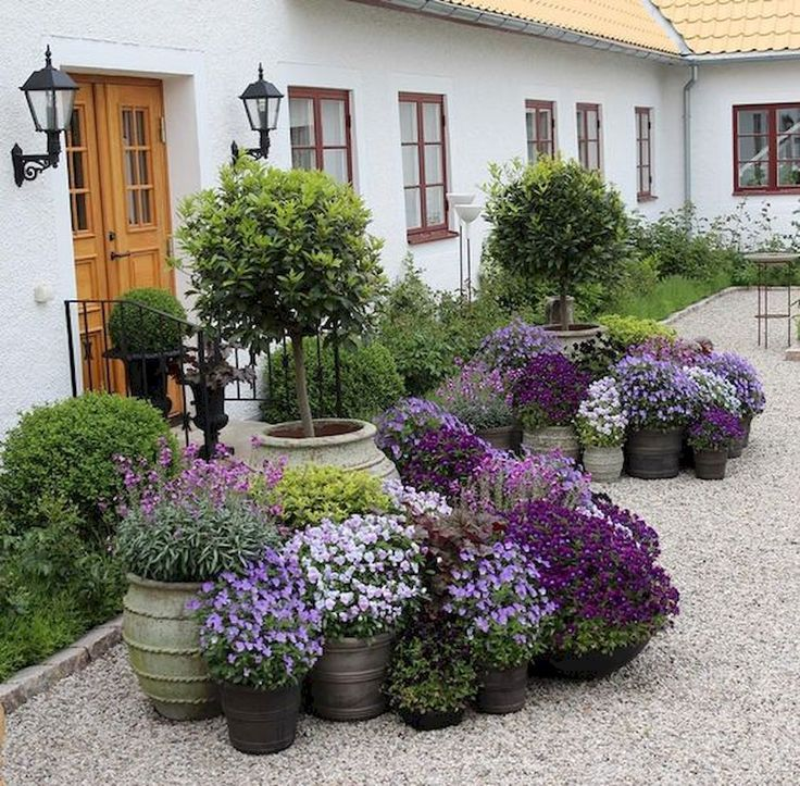 80 Best Patio Container G is part of Patio container gardening - 80 Best Patio Container Garden Design Ideas Best Shade Plants & 30+ GContainer Design for Sun16 Colorful Shade Garden
