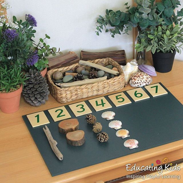 Counting With Nature Educatingkids Inspiring Playful Learning Investigate Education E Montessori Activities Preschool Learning Preschool Math