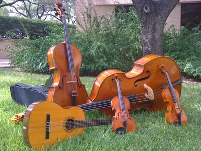 A Bass Cello Guitar Viola And Violin Together In The Grass Outside Butler School Of Music