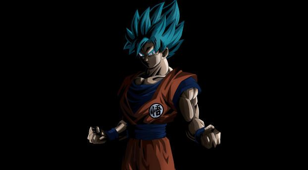 1242x2688 Goku Super Saiyan Blue Iphone XS MAX Wallpaper, HD Anime 4K Wallpapers, Images, Photos and Background - Wallpapers Den