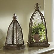 plant cloches with trays