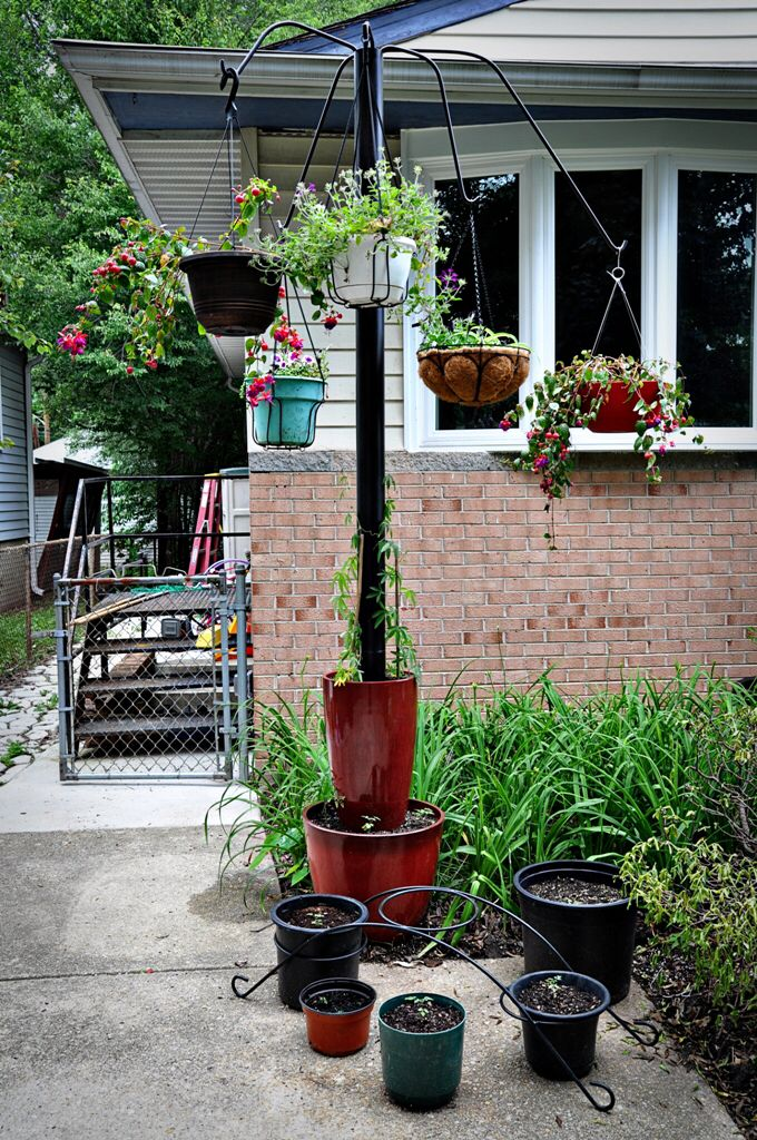Repurpose The Basketball Pole Small Space Gardening