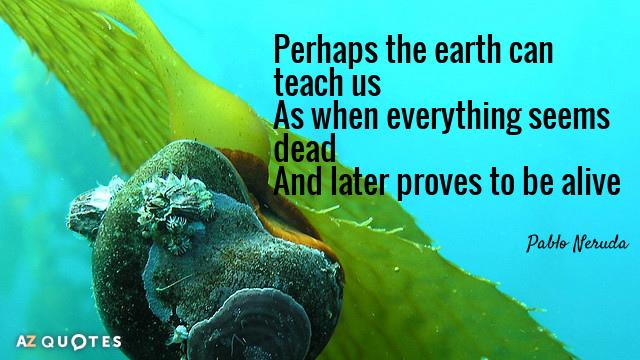 Pablo Neruda Quote