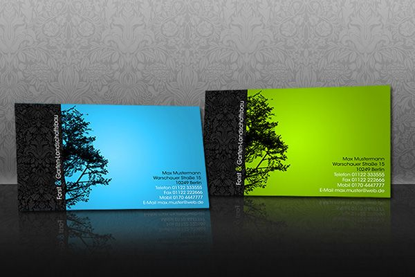 Creative business card template in two color schemes blue and creative business card template in two color schemes blue and green created by fxseven for a company of his friend reheart Gallery