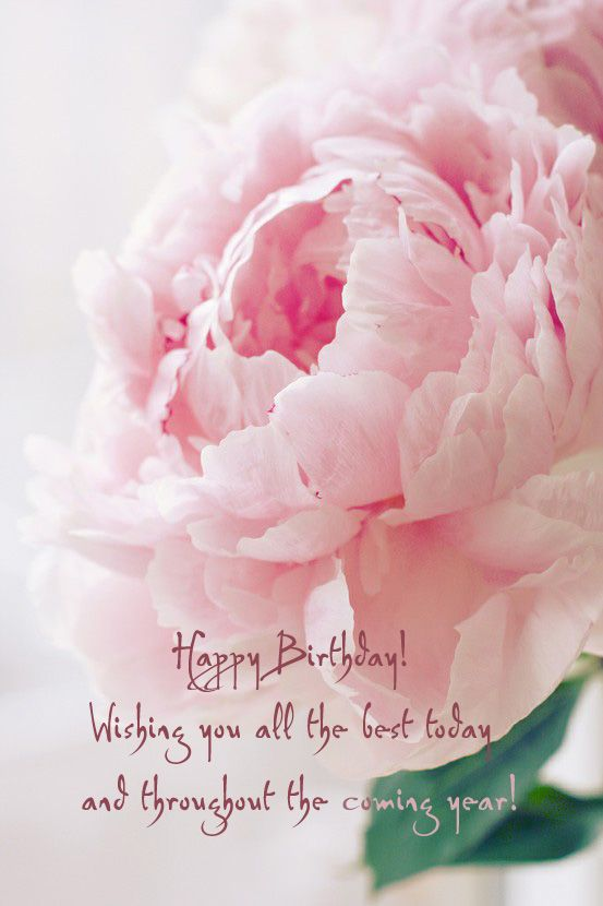 Perfect Peonies – Wishing Happy Birthday Cards