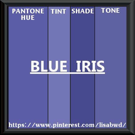 Pantone Seasonal Color Swatch Blue Iris
