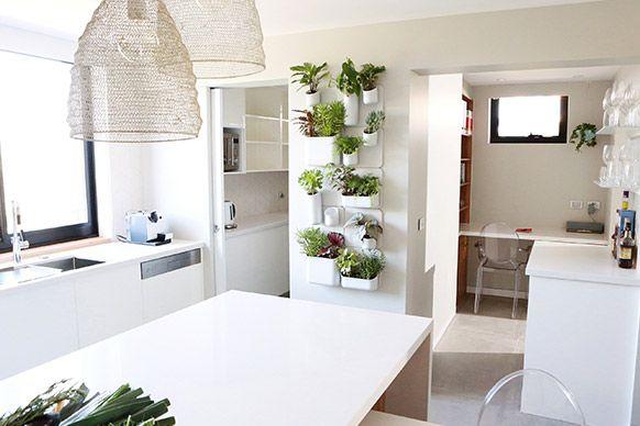Indoor Kitchen Herb Garden Idea