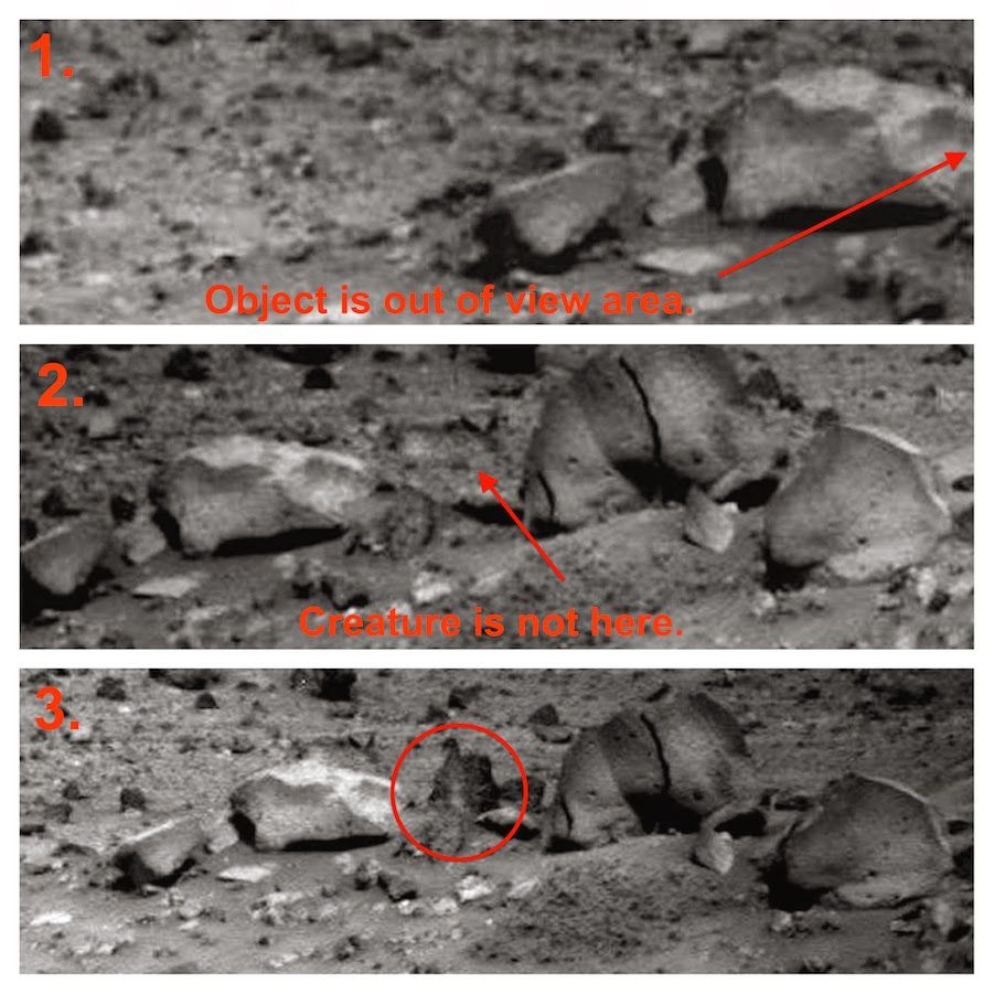 UFO SIGHTINGS DAILY: Moving Rock On Mars! Alien Animal ...