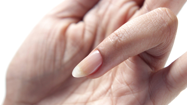 HOW TO Sculpt Natural Gel Nail Extensions Natural gel