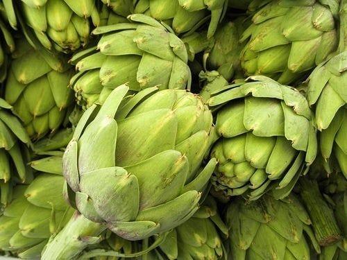 Te presentamos información de la alcachofa, de uno de los ingredientes de nuestro té.  Porque tú ere...