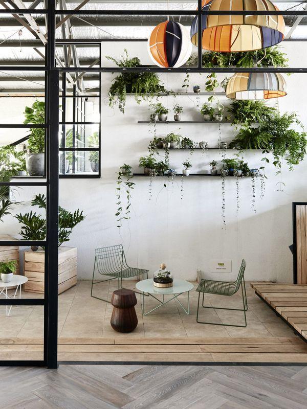 Pin de Clara Maria en Plantass ☆ Pinterest Plantas, Terrazas y - decoracion de interiores con plantas