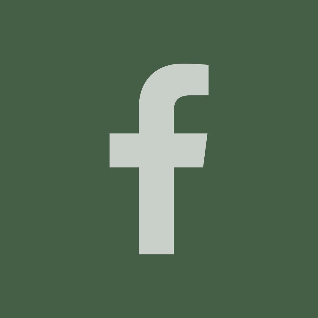 Facebook Icon Facebook Icons Ios Icon Iphone Homescreen Wallpaper