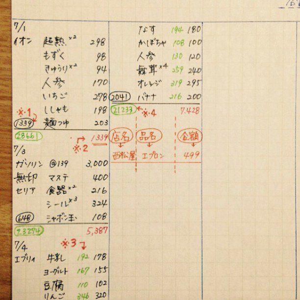 月の無駄使いを再確認 超分かりやすいと話題の づんの家計簿 を