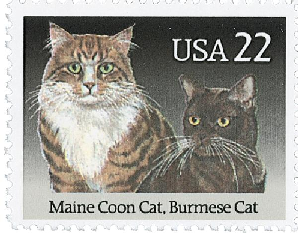 Pin on Cat Stamps