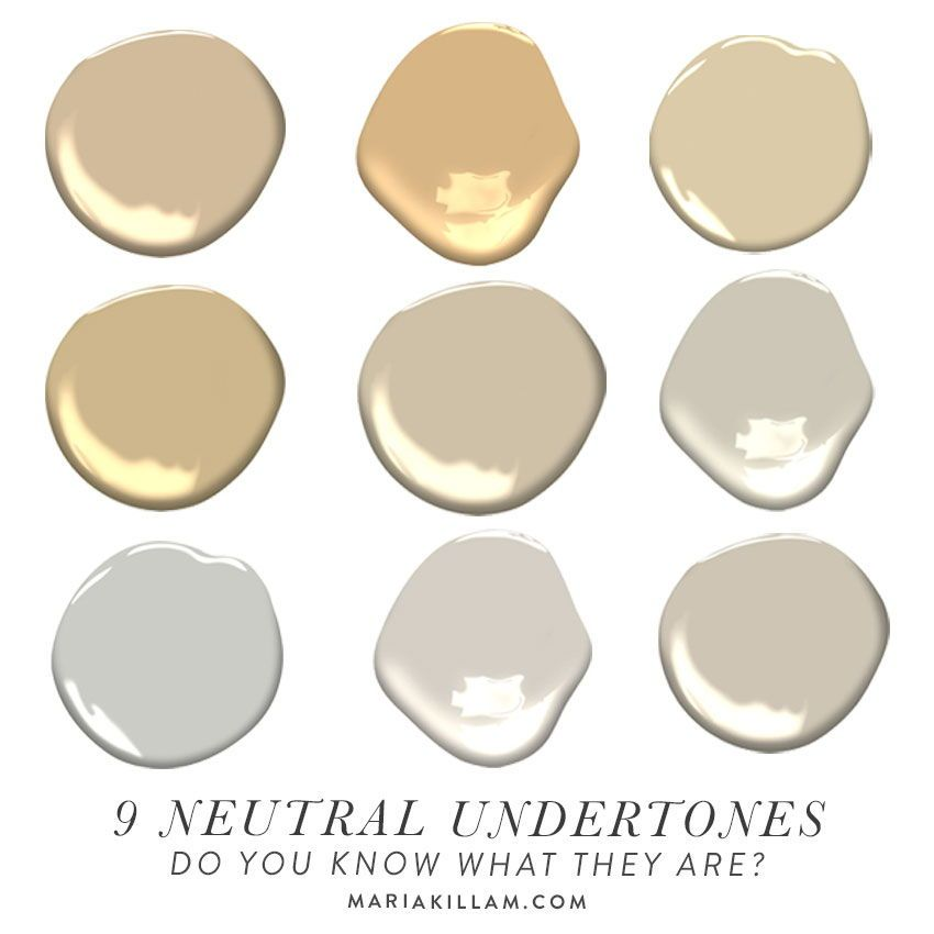 The 9 Neutral Undertones in the World   in 2020   Neutral ...