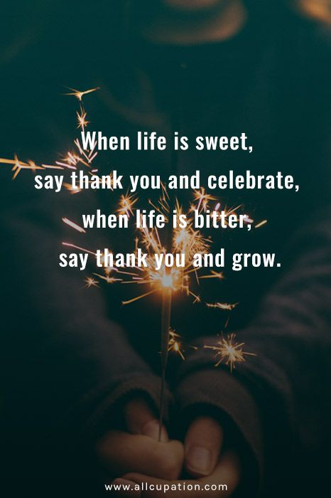 Quotes of the Day When life is sweet, say thank you and celebrate