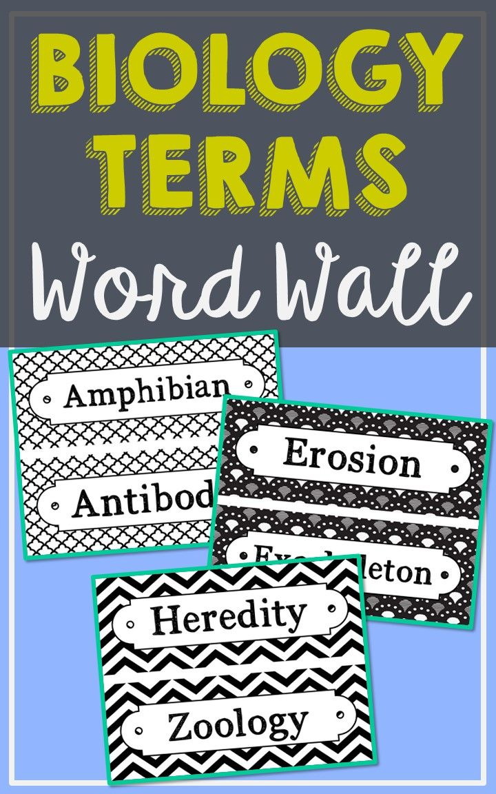 Biology Science Vocabulary Word Wall Each Of The 106 Terms Has Been Created In Black And White For Super Easy Printing