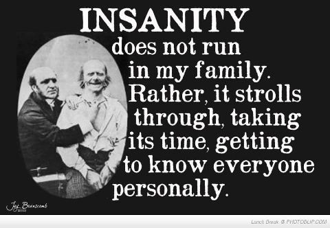 insanity...Haha! I think my family would appreciate this humor =)