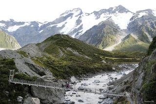 Wanderung über Neuseelands Hängebrücken