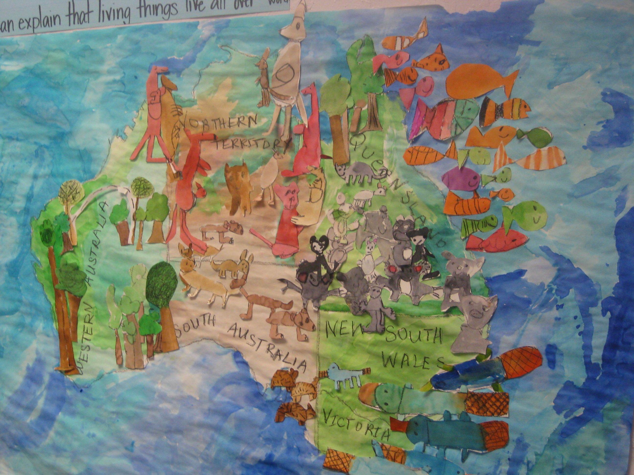 Australian Animals And Where They Live Map