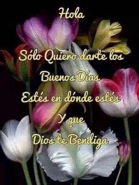Muy Buenos Dias Buenas Nuevas Pinterest Good Morning Good Day