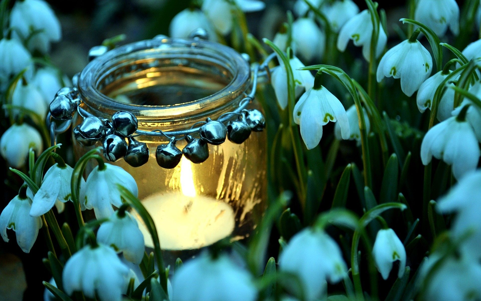 Water Candle Wallpaper Hd Resolution For Desktop Wallpaper Candles Wallpaper Pretty Backgrounds Spring Candles