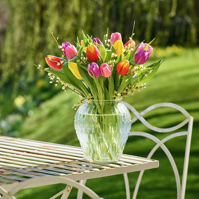 Tulips are the epitome of spring send a vase full to brighten their tulips are the epitome of spring send a vase full to brighten their day flowers spring springflowers tulips flowersofinstagram interflora mightylinksfo