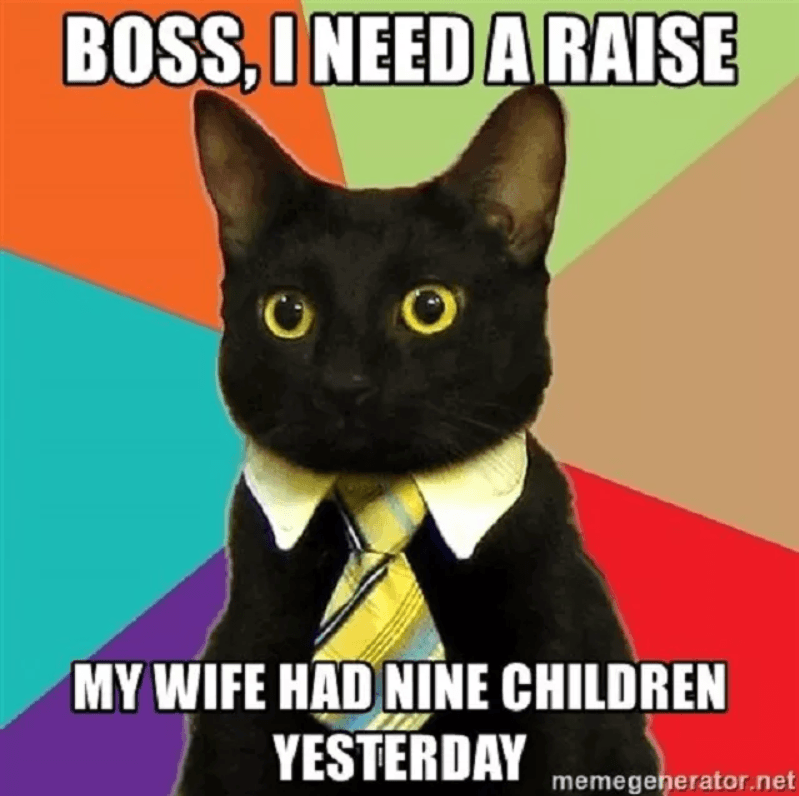 30 Cat Memes Will Make Your Day Better May 2020 Updated Business Cat Funny Food Memes Funny Animal Memes