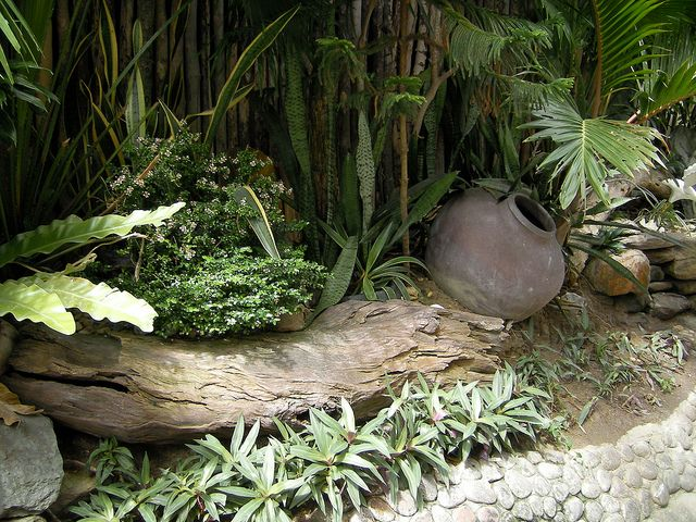 Tropical Garden Design Romblon Philippines Tropical Garden