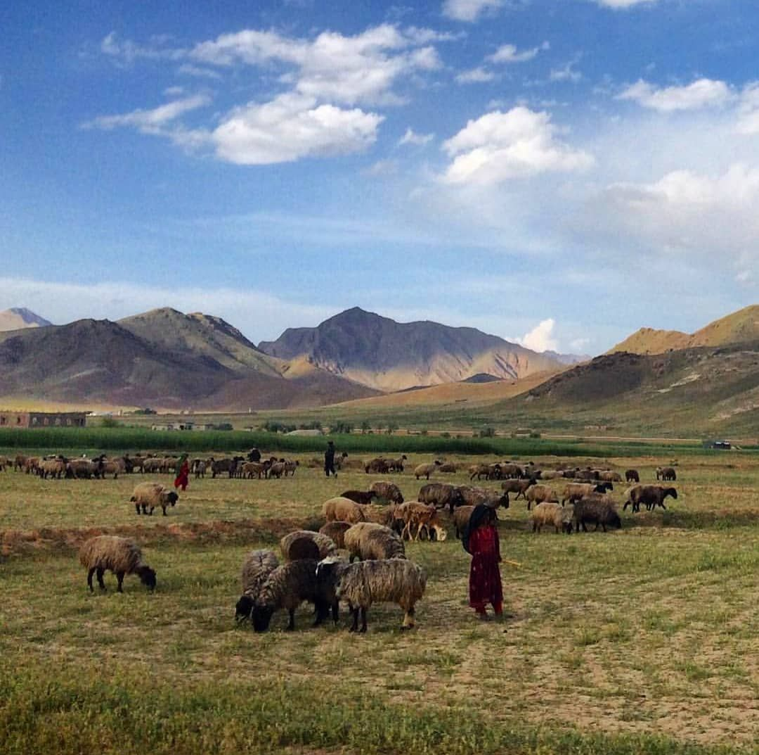 طبیعت زیبای ولایت لوگر افغانستان افغانستانم Logar Afghanistan Beautifulafghanistan Everydayafghanistan Afghanistanna Natural Landmarks Landmarks Nature