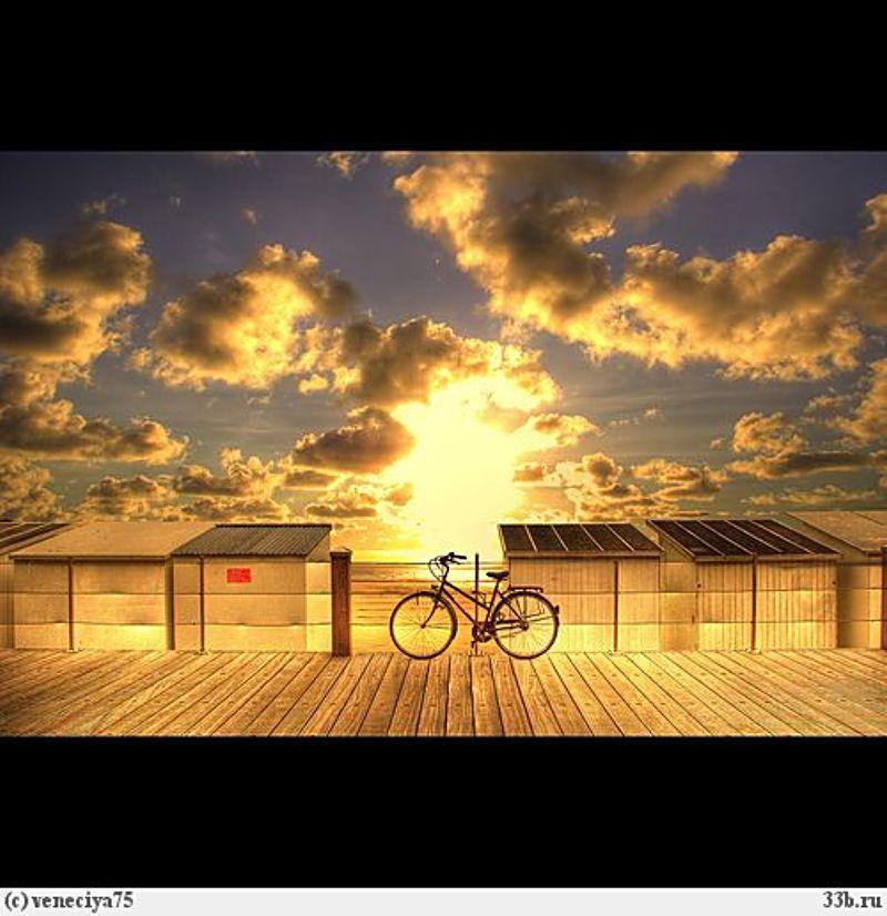 Yellow Morning Bike Ride