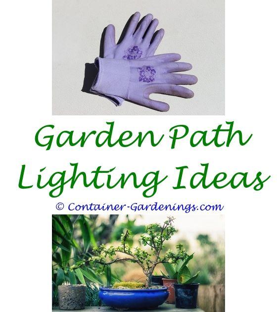 How To Start A Home Vegetable Garden | Garden ideas, Gardens and ...