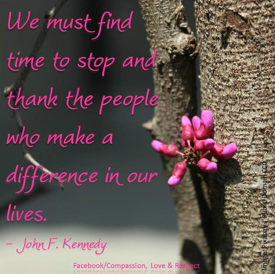 John F Kennedy Gratitude Quote: Quotes For Inspiration / Gratitude / John F. Kennedy