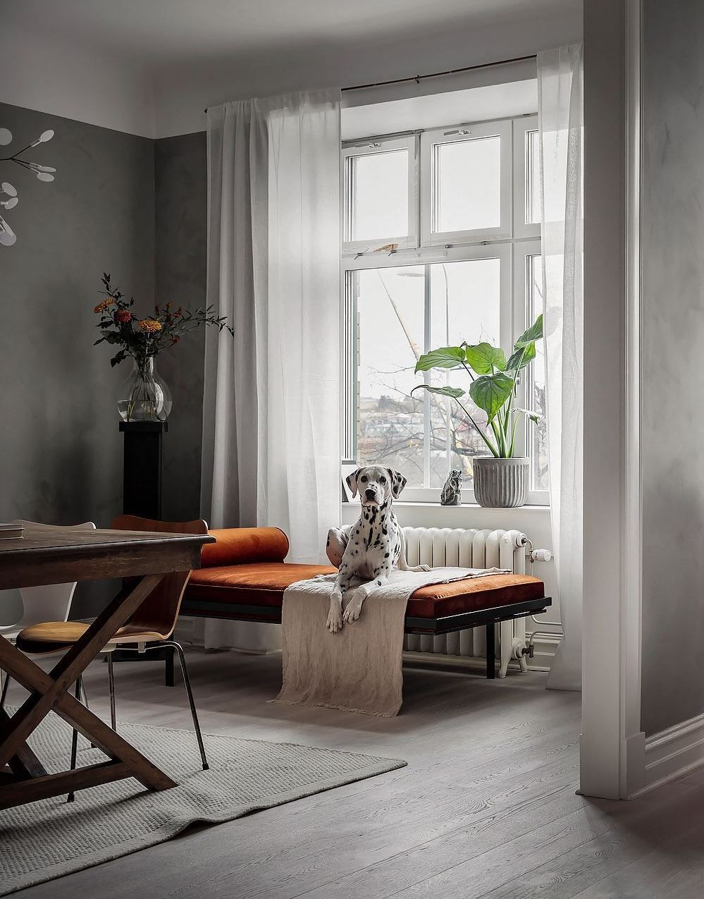 Mineral walls and pops of color in 2020   Living room ...