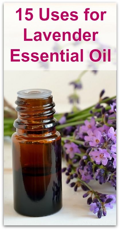 15 Uses for Lavender Essential Oil - Natural Holistic Life #essential #oil #lavender #aromatherapy #health #natural #holistic