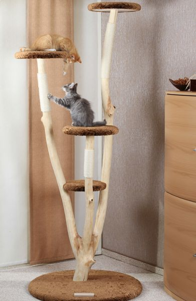 Pin By Wiepke On Rarissima Exclusive Cat Furniture Diy Cat Tree Cat Trees Homemade Cat Trees Diy Easy