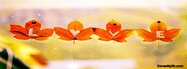 Falling Leaves Live Wallpaper Hd Fall Love Facebook Cover Facebook Covers Falling For