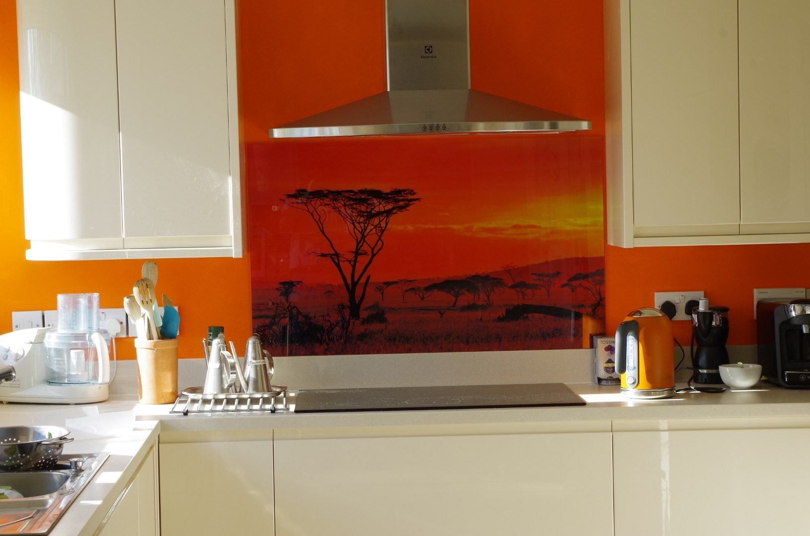 MySplashbackscouk Glass Splashback Reviews Testimonials And Examples Of Our Work