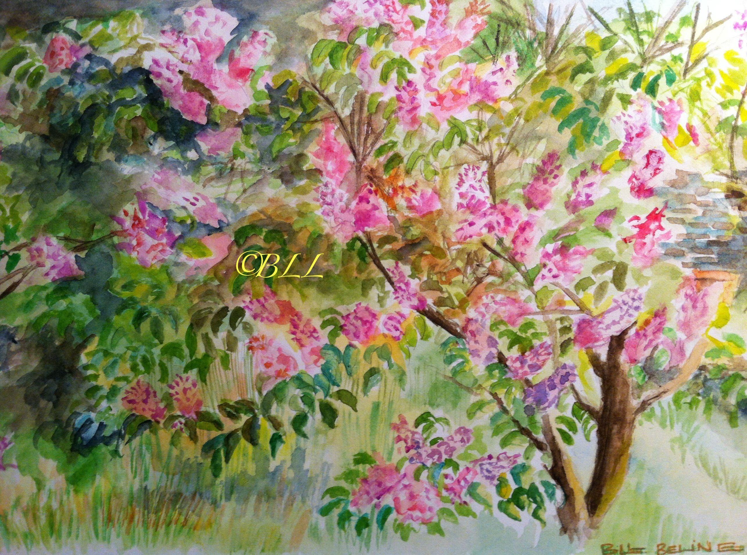 Festival en rose  Mes Peintures  Pinterest