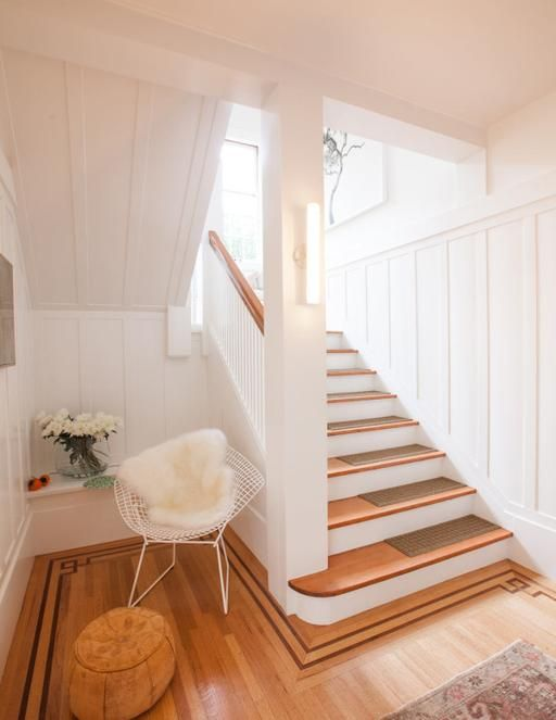 Pocket: A Berkeley Home Designed for Children and Dogs