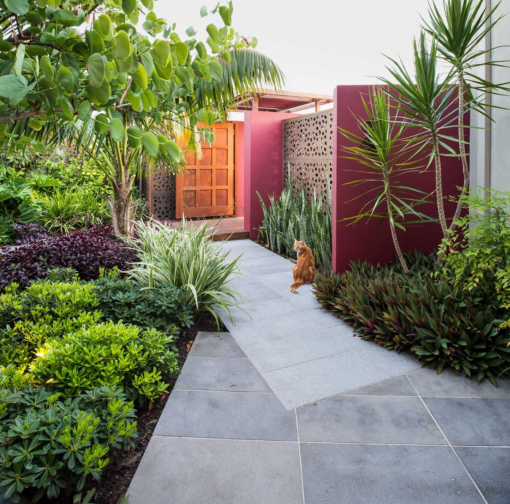 North-beach-perth-courtyard-design | Small tropical ...