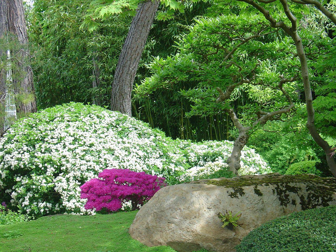 Jardins japonais le jardin albert kahn for Albert kahn jardin