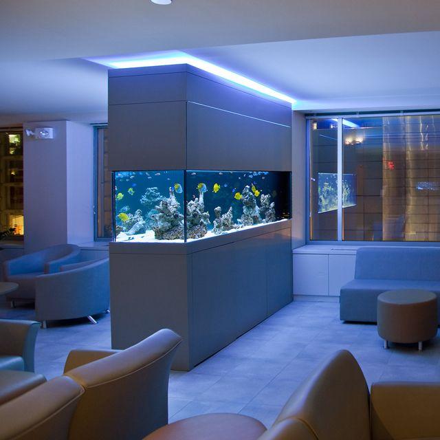 aquarium ideen raumteiler salzwasser einbauleuchten led blau ...