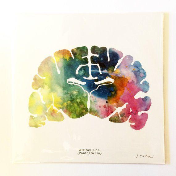 Set Of 16 Brain Psychiatry Art Print 12 X 12 Neurology