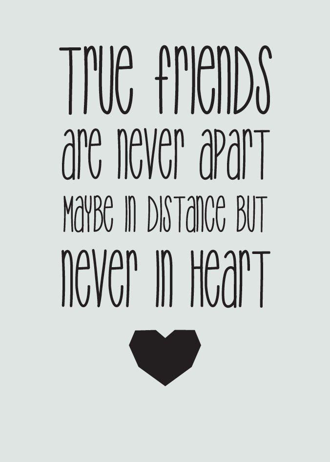 True Friends Sweet Zitate Freundschaft Sprüche