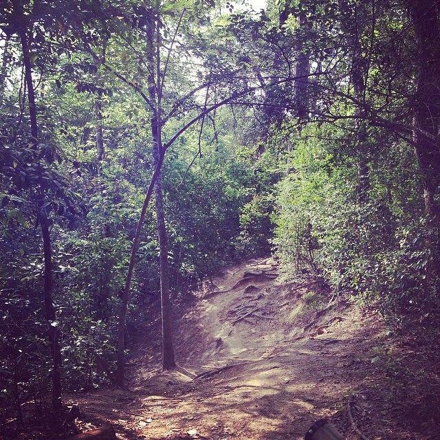 Brushy Creek Mountain Bike Trails
