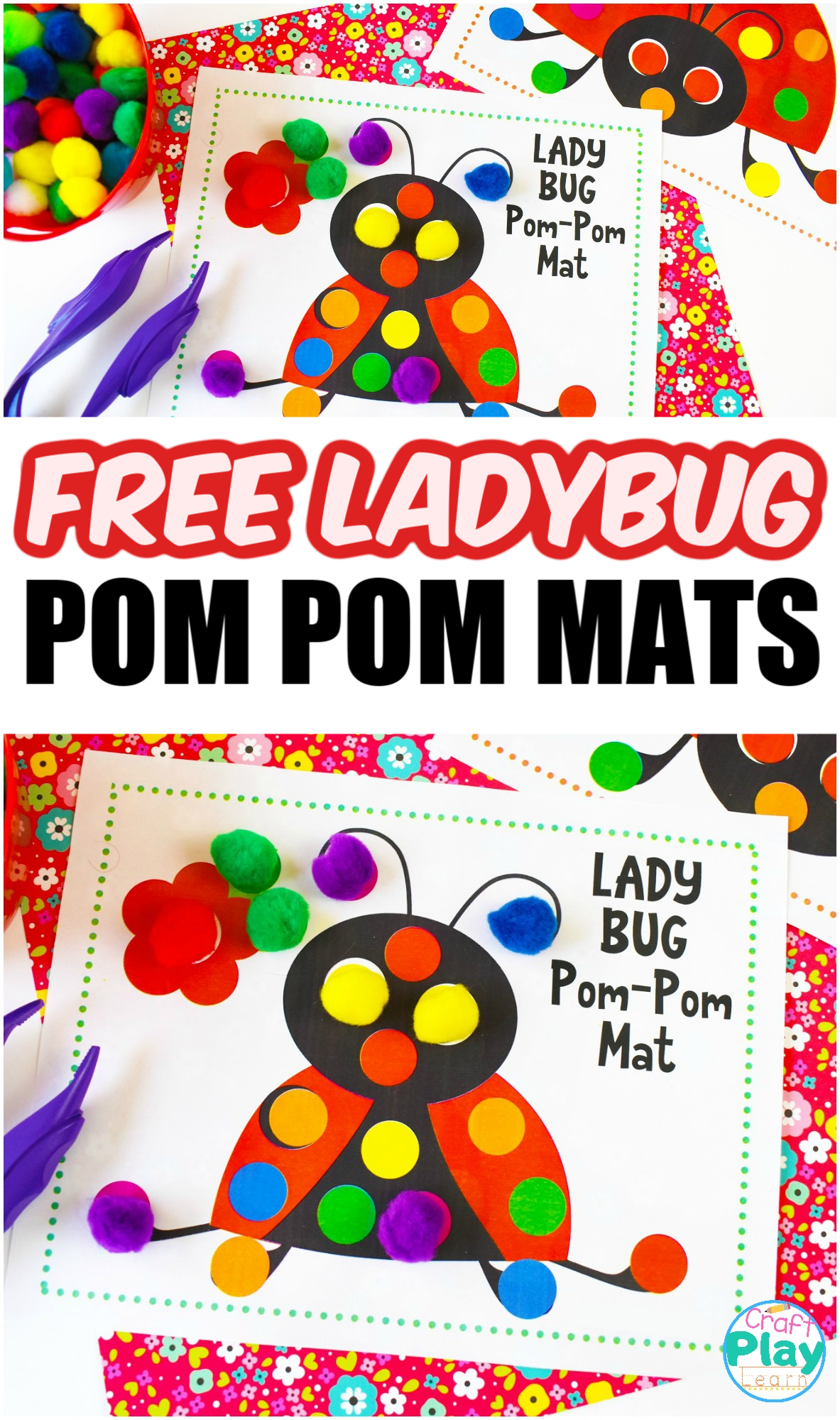 Color Sorting Ladybug Activity For Kids
